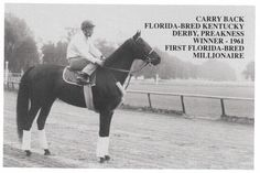 Carry Back won the 1961 Kentucky Derby and Preakness Stakes but finished in the Belmont Stakes behind Sherluck Carry Back, Carry On, The Belmont Stakes, Preakness Stakes, Derby Winners, Sport Of Kings, Thoroughbred Horse, Racehorse, Kentucky Derby