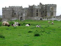 Carew Castle, Pembrokeshire, Wales.  The history is amazing- so beautiful!