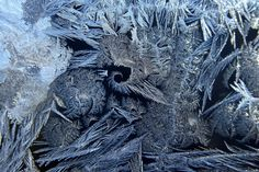 Ice crystals formed on this window of a home in Medina, Minnesota as temperatures dipped to 10 below zero. (Richard Sennott/Minneapolis Star Tribune/Zuma Press)
