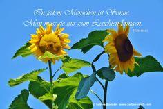 Man muss sie nur zum Leuchten bringen (Sokrates) Und genau das ist meine Berufung! www.farben-reich.com