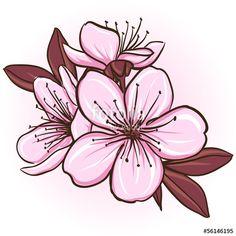 рисунки цветов для срисовки цветные пышные простые и красивые: 10 тыс изображений найдено в Яндекс.Картинках