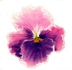 """Watercolors on rice-paper workshop - """"Pansies"""" - Watercolors on ... …"""