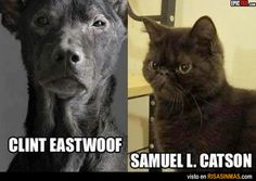 Parecidos razonables: Clint Eastwood y Samuel L. Jackson