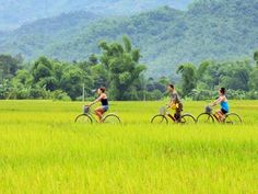 Best places for biking in Vietnam tour