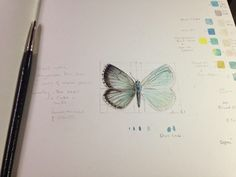 Dianne Sutherland: A Bit of Sparkle! Beautiful Blue Butterflies