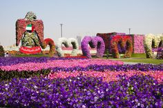 miracle garden in dubai - Google Search