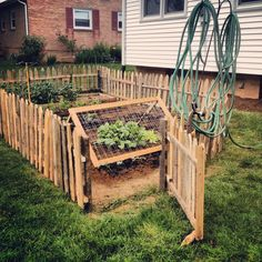 Primitive Pallet Picket Fence! We made it from 14 pallets.