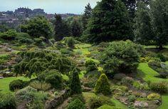 ©Royal Botanic Garden Edinburgh
