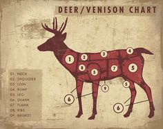 "What does Santa call his slowest Reindeer? ""Venison""!  Venison meat chart!"