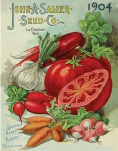 old seed catalog images | Seed Packets & Seed Catalogs