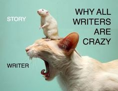 From K.M. Weiland's blog AuthorCulture.
