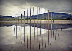 Natural Installations by Gerry Barry
