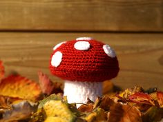 Gehaakte paddestoel Wil je het binnen wat opfleuren? Breng dan de herfstsfeer in huis met mijn zelfontworpen gehaakte paddenstoel! Het patroon kun je vinden op http://www.alshakenjeliefis.nl/?p=975.