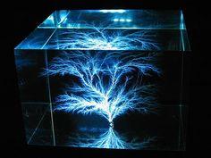 Lichtenberg Figures: Amazing beauty of captured lightning