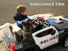 Boy and GSD pup in police car. Cops Humor, Police Humor, Police Dogs, Cop Dog, Funny Police, Police Life, Funny Animal Pictures, Dog Pictures, Funny Animals