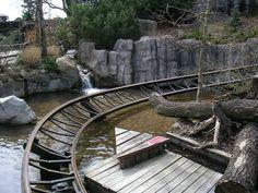 Timber Rider | Legoland Billund | Denmark
