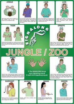 Jungle/Zoo Signs Poster - BSL (British Sign Language)Tap the link to check out great fidgets and sensory toys. Check back often for sales and new items. Happy Hands make Happy People!
