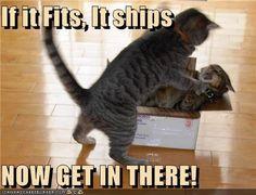 if it fits,it ships