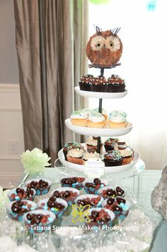 Owl Party Theme - Baby Shower