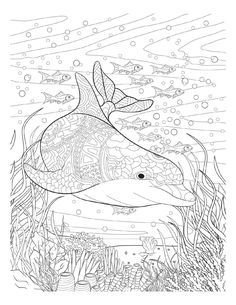 Oceana Adult coloring book Twenty creative and stress-relieving coloring pages for adults inspired from the amazing underwater world of the oceans and the rivers.
