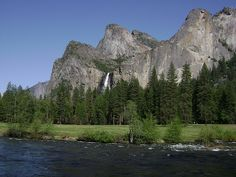 Yosemite NP - View on the Merced River and on Bridalveil Falls #Yosemite #YosemiteNationalPark #Falls #California #USA