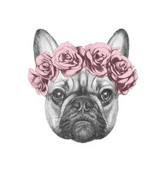 Draw Dogs Art Print: Original Drawing of Pug Dog with Floral Head Wreath. Isolated on White Background by victoria_novak : - Love Drawings, Animal Drawings, Bulldogge Tattoo, Dog Lover Gifts, Dog Lovers, Buy French Bulldog, Plant Drawing, Drawing Flowers, Drawing Art