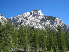 Mt. Charleston, NV~  used to hike here when we lived in Vegas to get away from the dessert.  Beautiful :)