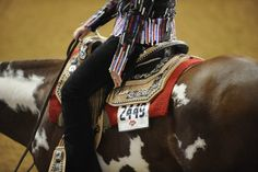 Paint horses and bling <3