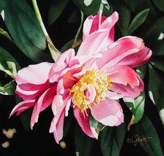 still life paintings peonies   Cascading Peony, original painting by artist Jacqueline Gnott ...