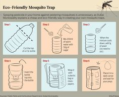 Make Your Own Eco-friendly Mosquito Trap in 6 Simple Steps?ref=pinp nn Mosquitoes are vectors for some serious diseases, transmitting viruses through infected blood. These vector-borne illnesses range from malaria, dengue and even the deadly yellow fever. There are many off-the-shelf pesticides and mosquito repellents that claim to take care of the menace. However,...