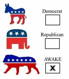 Awake!  I am still a Democrat, but I'm wide awake to the blatant corruption of the Republican Party.