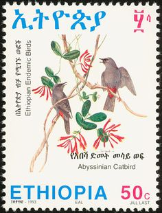 Abyssinian Catbird stamps - mainly images - gallery format