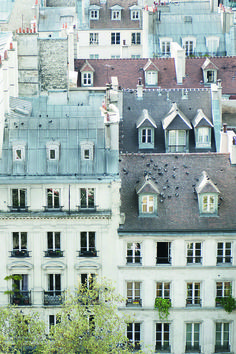 Brick House Exterior Discover Paris Photography - Birds on a Rooftop in Paris Cream and Grey Architecture Photography Neutral French Home Decor Large Wall Art The Places Youll Go, Places To Go, Baroque Architecture, Image Paris, Paris Rooftops, Montmartre Paris, Paris Paris, Paris Grey, Paris Images
