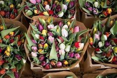 Local Flowers / Why shop local / Floral bouquet from your local flower farmer