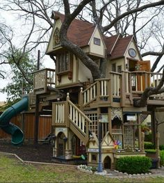 The ultimate kids playground/treehouse