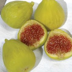 Harvest Large, Sweet FigsTwice a Year The Desert King Fig is a good choice for cooler climates. It is a large, deep green fig with strawberry red flesh. The King Fig Tree is a heavy producer of excellent quality, sweet figs. The tree sets a large early Grow Organic, Organic Seeds, Potted Trees, Trees To Plant, Desert King, Strawberry Color, Green Fig, Dwarf Trees, Yellow Fruit
