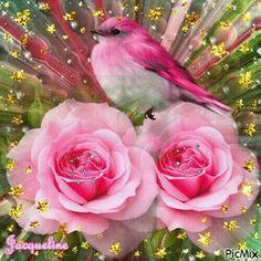 Little Bird Voor Tine de jong Beautiful Gif, Beautiful Roses, Beautiful Butterflies, Pretty Flowers, Beau Gif, Flowers Gif, Glitter Flowers, Bon Weekend, Glitter Graphics