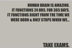 Funny pictures about The human brain. Oh, and cool pics about The human brain. Also, The human brain photos. No Kidding, College Humor, College Life, College Quotes, School Humor, School Quotes, Funny School, That Way, Senior Boys