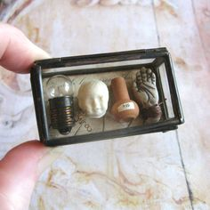 Pocket Museum - Glass Box Assemblage Curiosity Art Object(Etsy のComeDayGoDayより) https://www.etsy.com/jp/listing/212869823/pocket-museum-glass-box-assemblage