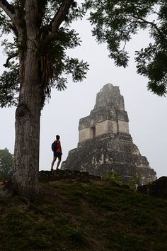 In search of the mayans, Tikal / Guatemala (by .mathias).