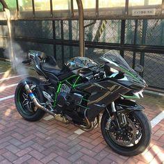 Kawasaki Motorbikes, Motos Kawasaki, Kawasaki Motorcycles, Kawasaki Ninja, Moto Ninja, Ninja Bike, Ride Out, Futuristic Motorcycle, Super Bikes