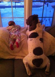 foto-perro-y-bebe-mirando-por-ventana