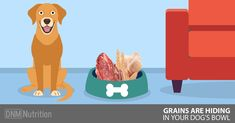 Are you ensuring that your dog has grain free dog food? Even as a raw feeder grains may be hiding in your dog's food bowl! Here's how to change that.