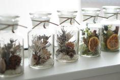 fuuさんが投稿した画像です。他のfuuさんの画像も見てませんか?|おすすめの観葉植物や花の名前、ガーデニング雑貨が見つかる!🍀GreenSnap(グリーンスナップ)