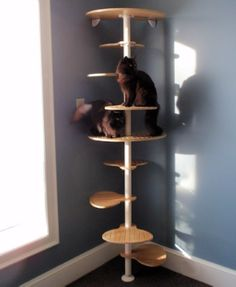1000 images about cat shelves on pinterest cat shelves cat furniture and cat trees - Modern cat tree ikea ...