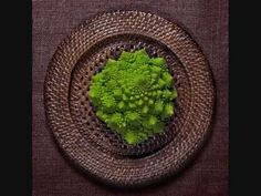 Food and drink photography by ilian