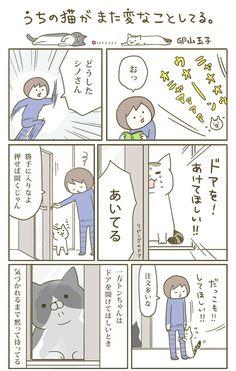 うちの猫を見てくれ……なんだかちょっと変なんだ。猫マンガ3連発! | ダ・ヴィンチニュース