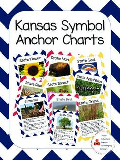 mammals anchor chart Kansas Symbol Pack complete with: -State Flower -State Mammal -State Seal -State Reptile -State Insect -State Amphibian -State Soil -State Bird -State Grass -State Tree Anchor Charts, Reptiles, Mammals, Kansas Day, Celtic Tree Of Life, Lesson Plans, Symbols, Grass, Seal