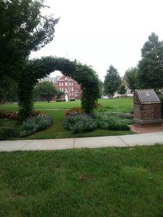 Spelman college transfer essay