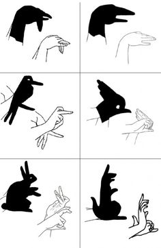 Hand shadows - link no longer works, but the chart is self explanatory Shadow Art, Shadow Play, Diy For Kids, Cool Kids, Shadow Puppets With Hands, Hand Shadows, Shadow Theatre, Hand Puppets, Craft Activities